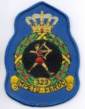 323 squadron