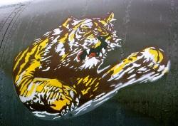 Tiger Meets