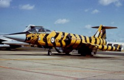 104833_as12833_tiger_Woodbridge1969