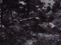5808_crashsite_1983