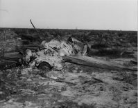 56-762_NF762_wreck