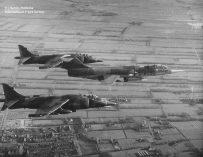 D-8090_Rotatie_Harriers_LWD_RemkoBekkemaX